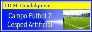 banner futbol7