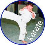 banner karate