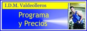 BANNER programa y precios VALDEOLLEROS
